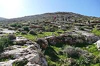 Wadi-Makukh-530.jpg