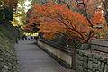 Wakayama Castle13s4592.jpg