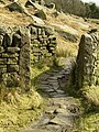 Wall and Path to Stanage Plantation - geograph.org.uk - 752686.jpg