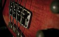 Warwick bass bridge & tailpiece (by donvix).jpg