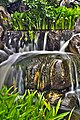 Waterfall in The Chinese Gardens of Friendship.jpg