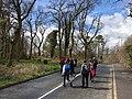 Wenyss Bay entering woodland walk.jpg
