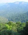Western Ghats Vegetation - View en route Kottiyoor to Mananthavady19.jpg