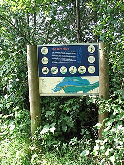 Whitlingham Country Park - bird hide information board - geograph.org.uk - 1381755