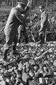 Wilhelm Walther, Dienst im Wald 1, 2-065-066-5883.tif