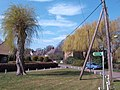 Willows in Boughton village - geograph.org.uk - 389134.jpg