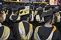 Winter 2016 Commencement at Towson IMG 8286 (31417050090).jpg