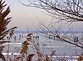 Winter am Schweriner See.jpg