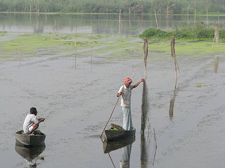 Sustainable fishing in India, an example of wise use. Wise use.jpg