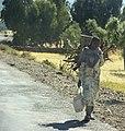 Woman Carrying Firewood, Near Axum, Ethiopia (3173994183).jpg