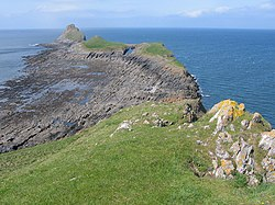 Worm's Head - geograph.org.uk - 171489.jpg