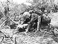 Wounded Marine on Peleliu.jpg