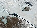 Wrangelisland (cropped).jpg