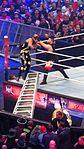 WrestleMania 32 2016-04-03 18-12-35 DSC-HX90V 3309 DxO (27226687854).jpg