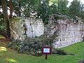 Wroxall Abbey Ruins West.JPG
