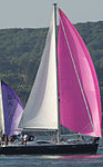 Yachts racing during Round the Island Race 2010 4.jpg