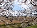 Yatsuomachi Nishijinzu, Toyama, Toyama Prefecture 939-2311, Japan - panoramio (16).jpg