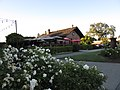 Yountville Calif 32 - panoramio.jpg