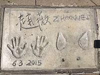 Zhaoweihandprints.jpg