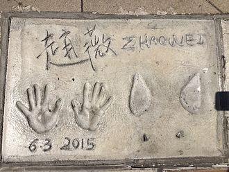 Zhao Wei - Image: Zhaoweihandprints