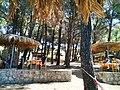 'Taverna Oasis' on the road to Porto Katsiki - panoramio (1).jpg