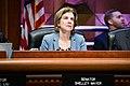 (02-11-20)NYS Senator Shelley Mayer.jpg