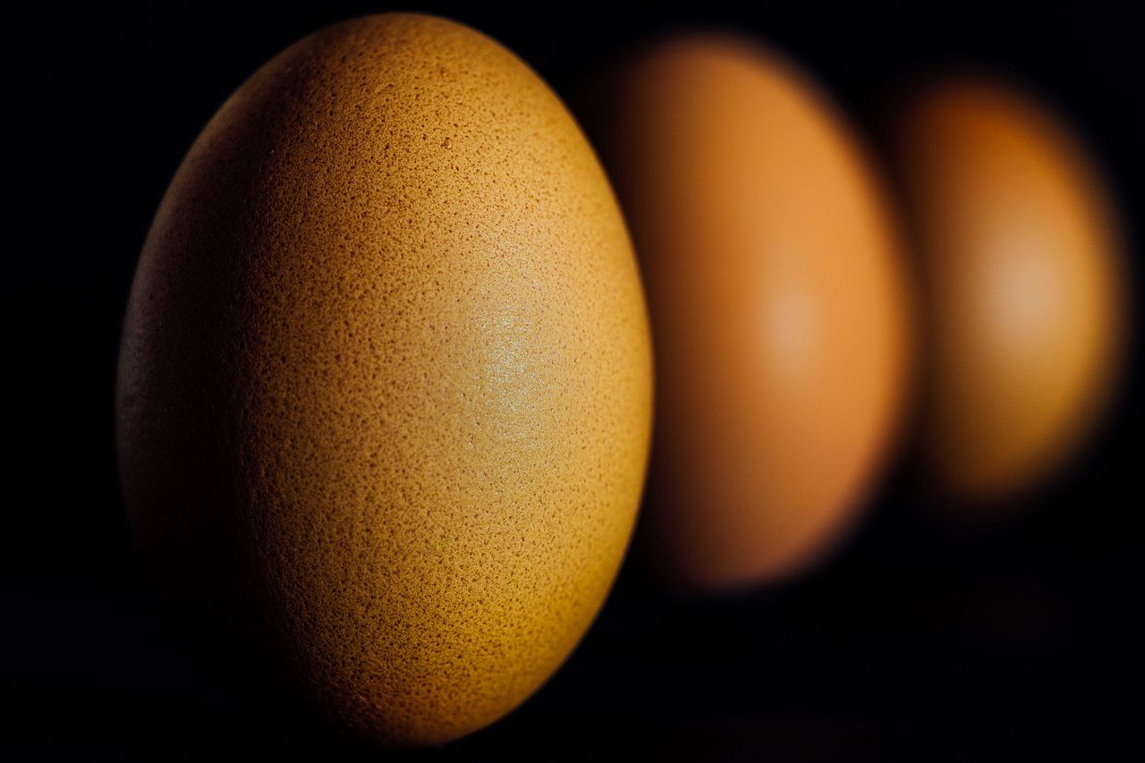 Utah Eggs for Montana Gold Proved Profitable Deal for Trader in 1866