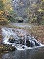Φύλλα και νερό.jpg