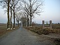 Автошлях С200309 «Новосілка — Соколів» - В'їзд у Скоморохи із Соколова - 11112272.jpg