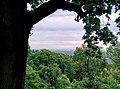 Вид на Київ з Маріїнського парку.jpg