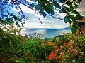 Вид на море - panoramio (5).jpg