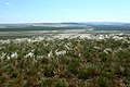 Вид с горы Даминтау на гору Белюнтау - panoramio.jpg