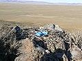 Гнездо большого пустынного орла - panoramio.jpg