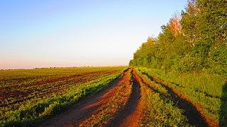 Pervomaysky District, Tambov Oblast District in Tambov Oblast, Russia