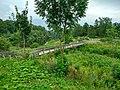 Олонец, мост полуостров-остров Мариам, вид 2.jpg