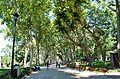 Парк перед дворцом Топкапы.JPG
