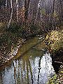Река Ельцовка 06.jpg