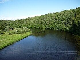 Река Осуга.jpg