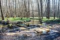 Річка Іловиця 01.jpg