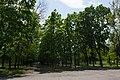 Симметрия в Парке Победы.jpg