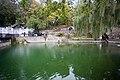 Сквер «Лебедине озеро» - panoramio (2).jpg