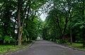 Стрийський парк DSC 0268.jpg