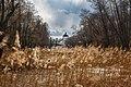 Толшевский Спасо-Преображенский женский монастырь в Воронежском заповеднике.jpg
