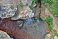 چشمه ساری سو روستای گنبد عجب شیر - panoramio.jpg