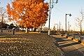 ときの広場 - panoramio (5).jpg
