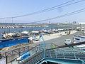 佐野漁港1.jpg