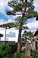 太宰春台邸跡 飯田市にて 2014.9.09 - panoramio.jpg