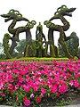 太陽島公園ドラゴンとペチュニア.jpg