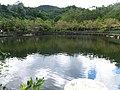 暖東苗圃 Nuandong Nursery Garden - panoramio (1).jpg