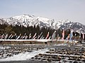 滝谷農村公園 鯉のぼり・残雪の割引岳と水量の増えた登川.JPG